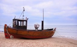 Landing Obligation: lessons from the Baltic Sea