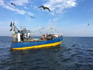 Fundacja MARE & LIFE for a cleaner Baltic Sea
