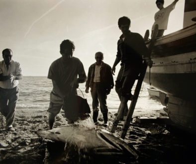 French Justice Rules Against Bluefin Tuna Quota Allocation Decision